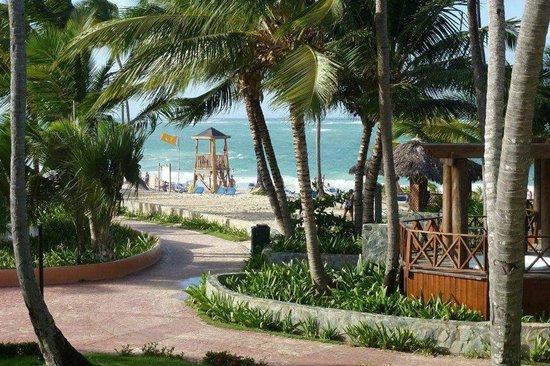 Barcelo Punta Cana : Camino a la playa