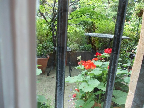 The Flower House : Blick in den Garten