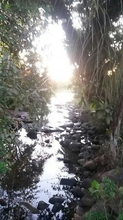 Mayotte Découverte : Rivière de Chiconi (Mayotte)