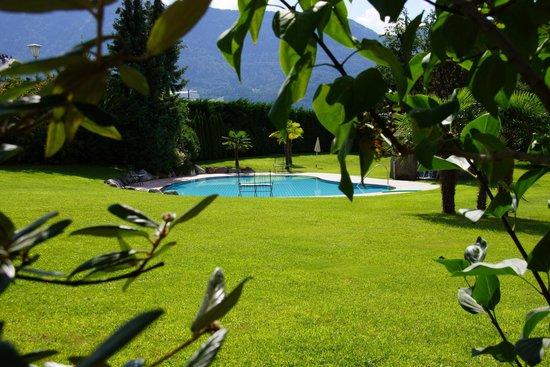 Hotel Garni Traubenheim: Pool