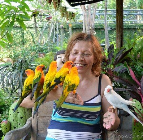 Phuket Botanic Garden: Они такие очаровательные!!