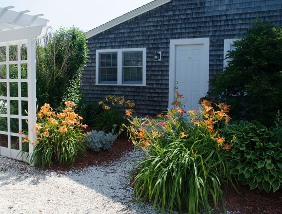 Beach Breeze Inn: Back Gardens