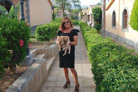 Dunas Maspalomas Resort: En el Alrededor