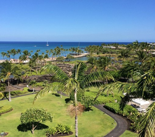 Waikoloa Beach Marriott Resort & Spa : The view from our room...I never wanted to leave