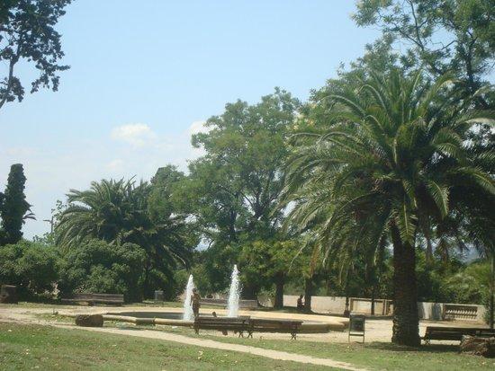 Museu Nacional d'Art de Catalunya: Muito verde