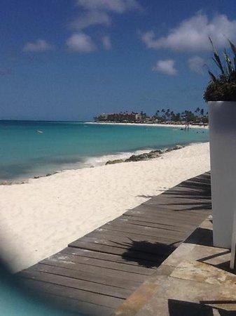 Tamarijn Aruba All Inclusive: view from pool of sea