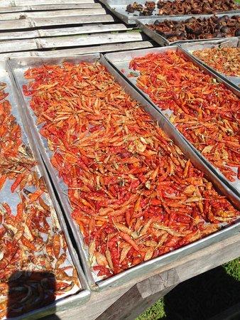 Villa Vanilla / Rainforest Spices: Cayenne pepper drying