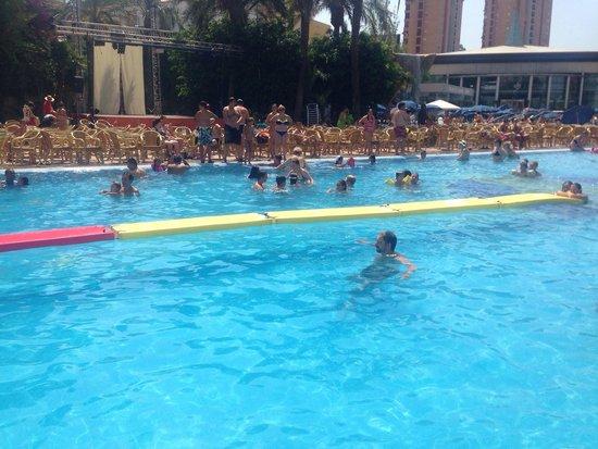 Gran Hotel Bali - Grupo Bali: Pool games!