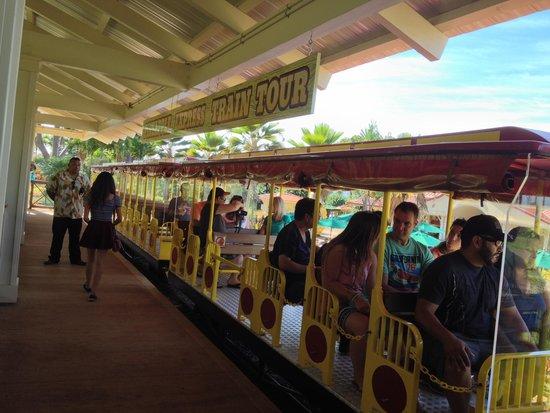 Dole Plantation: Train ride