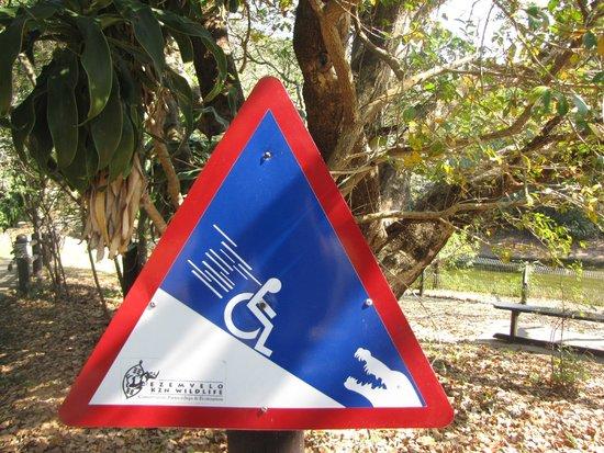Crocodile Centre St Lucia: carefull