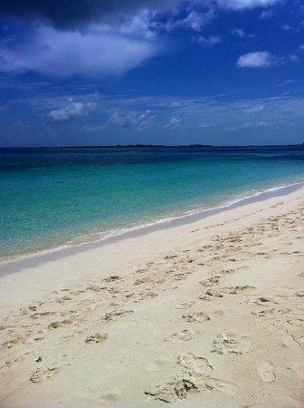 Hotel Riu Palace Paradise Island: Beach
