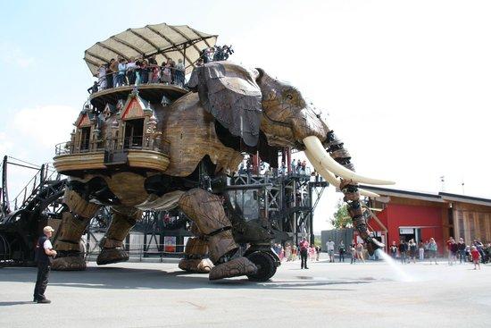 Les Machines de L'ile : elefante
