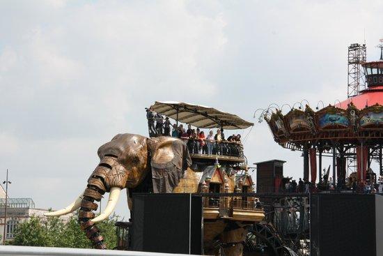 Les Machines de L'ile : elefantito
