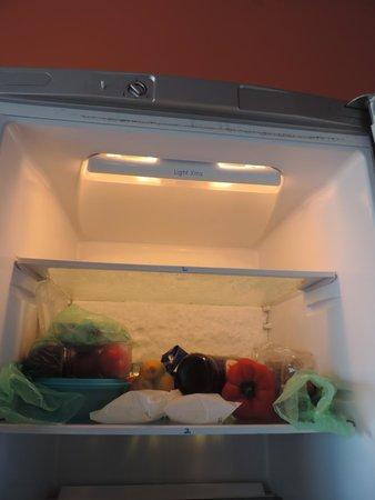 B&B Olympus: Namražená lednička cca 5 cm ledu na zadní stěně