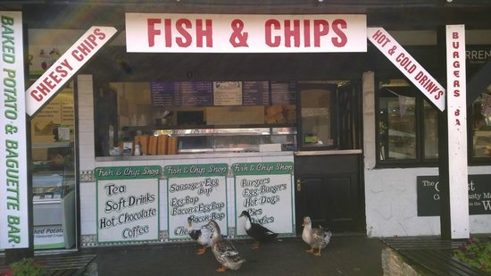 Trago Mills Family Shopping & Leisure Park: Fish and chips. And geese.