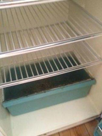 Diocletian Palace Experience : frigorifero con muffa