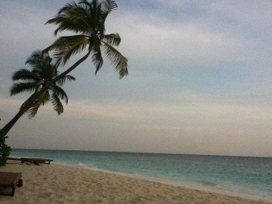 Filitheyo Island Resort: idem
