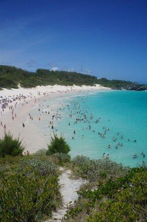Horseshoe Bay Beach: Pink sand, Interesting  rocks and beautiful ocean waters