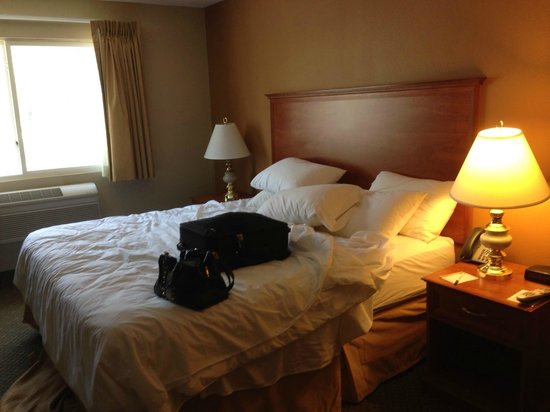 Quality Inn & Suites: Bed and Nightstands