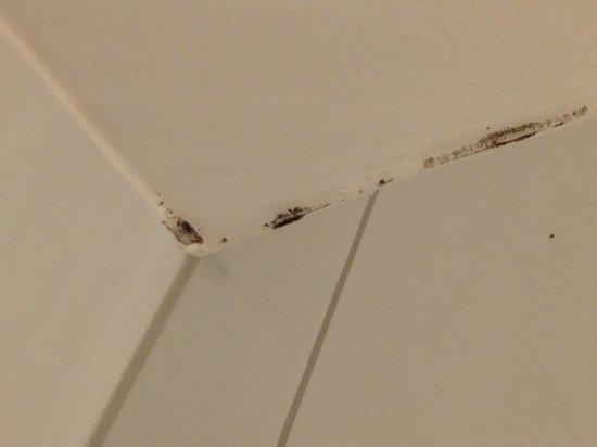 ibis Zurich Messe Airport: Mould in bathroom
