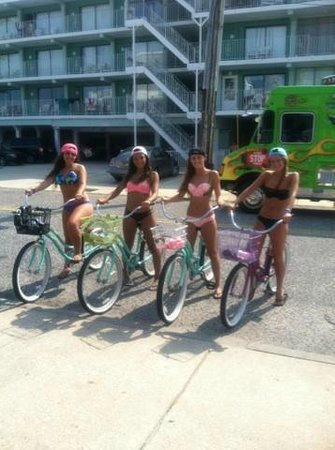 Paradise Oceanfront Resort : The bikes my friends and i rented from Bradleys, so cool!!