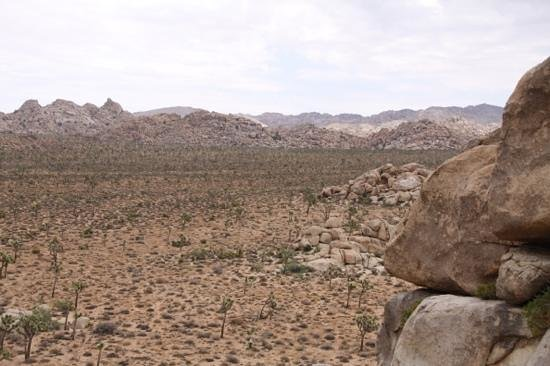 Cap Rock: rotsvast