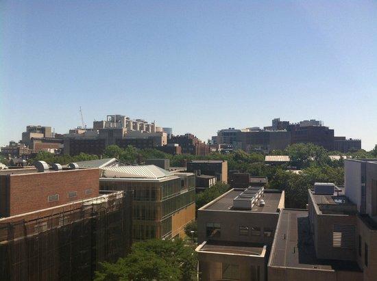 Hilton Inn at Penn: View