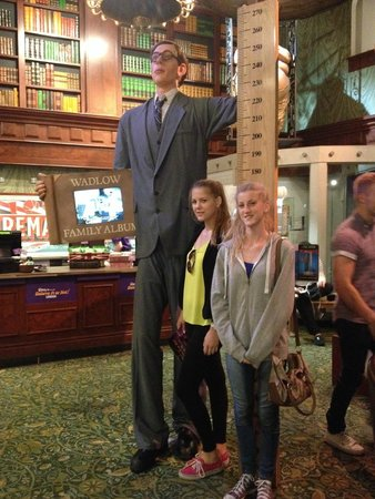 Measuring Against The Worlds Tallest Man Picture Of Ripleys