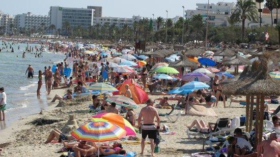 Protur Bonamar: Busy Beach nearby