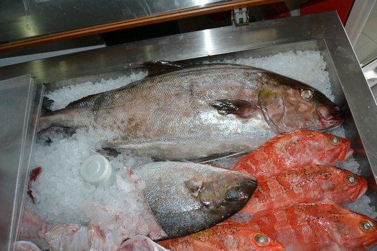 Delicias do Mar: Peixe Fresco todos os dias !!!