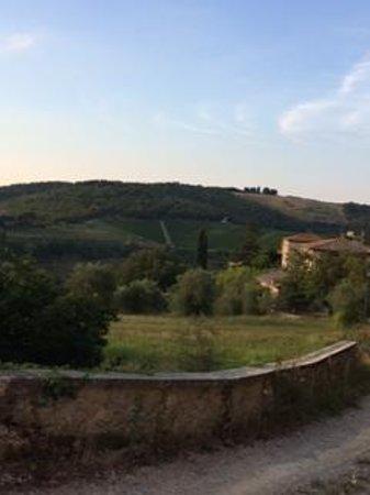 Fattoria Tregole: a beautiful view