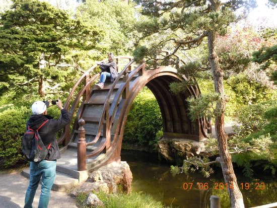 Japanese Tea Garden: Arched Bridge in Japanese Garden in Golden Gate Park