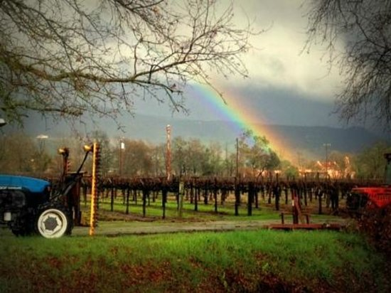 Follow the rainbow to Saddleback Cellars!