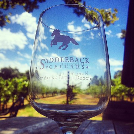 Grab a glass and fill it up with Saddleback Cellars wine!