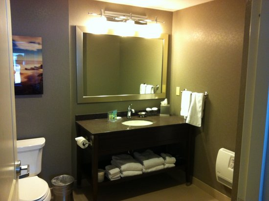 Hampton Inn by Hilton Halifax Downtown: Corner room bathroom - too big to get in one shot