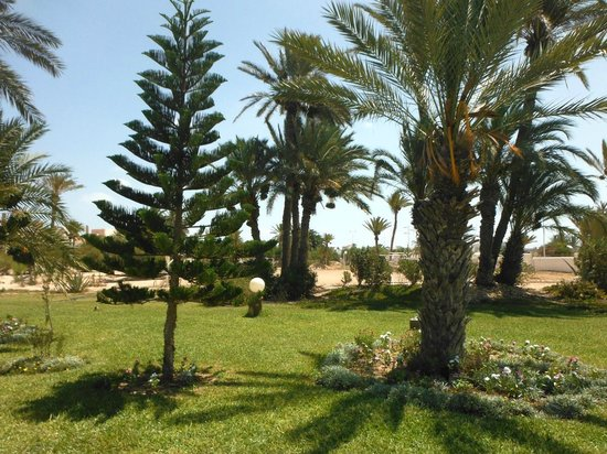 Club Marmara Narjess: les jardins