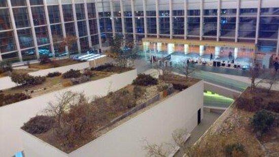Museo de la Evolución Humana: vista desde lo alto del museo