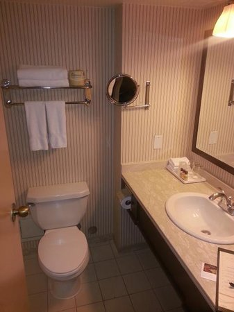 Sheraton Gateway Hotel in Toronto International Airport : restroom