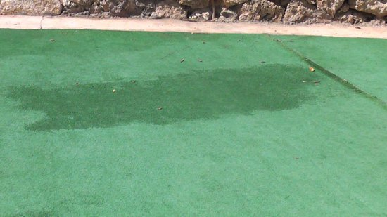 Reef Oasis Beach Resort : Stained and dirty carpet near pool