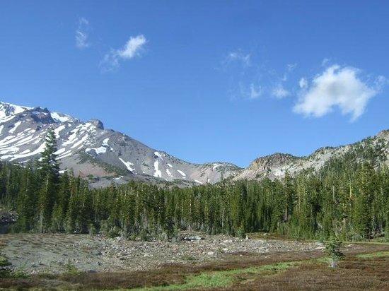 Mount Shasta : Panther Springs