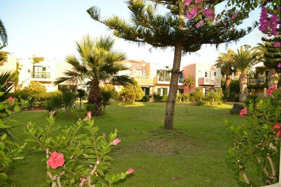 Zorbas Village and Aqua Park: vegetazione