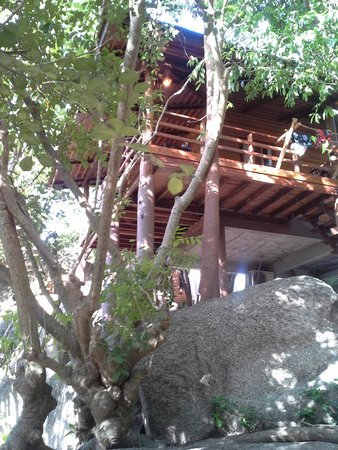 Sensi Paradise: Our bungalow