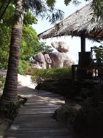 Sensi Paradise: Surroundings near the restaurant