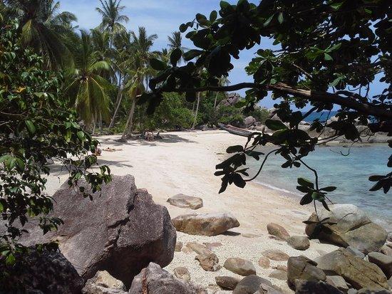 Sensi Paradise: Sai nuan beach
