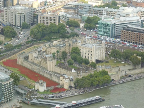 The View from The Shard: Tower of London field of poppies