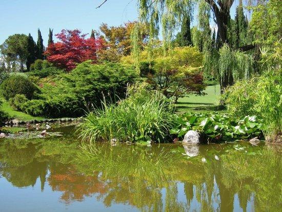 Parco Giardino Sigurta : Пруд в центре парка