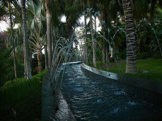 Hacienda San Jorge: vista desde la habitacion , jardines del hotel
