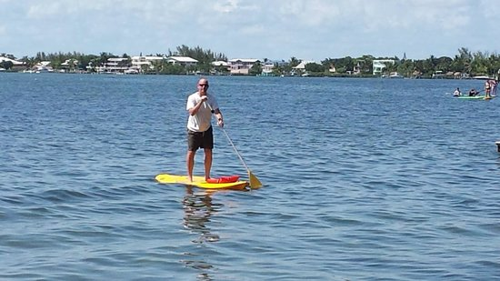 Bay Harbor Lodge: Free use of paddleboards!
