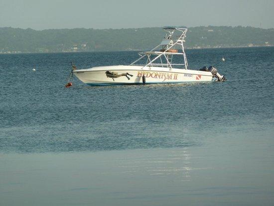 Hedonism II: Dive boat