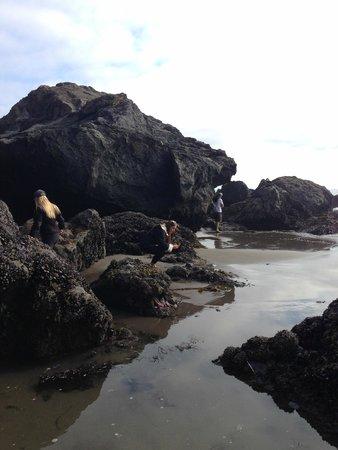 Steep Ravine Cabins: beach